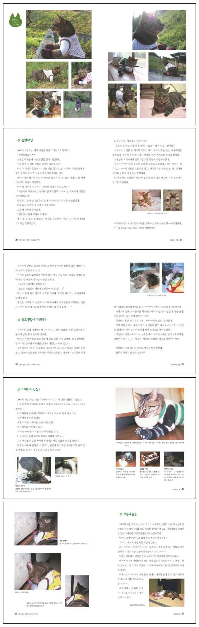 치비타의 기적(양손 없는 고양이) 도서 상세이미지