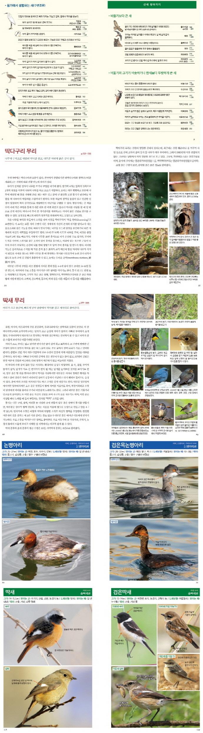 화살표 새 도감(한눈에 알아보는 우리 생물 3) 도서 상세이미지
