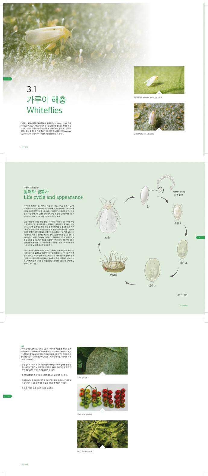 시설작물 해충 알아보기와 식별하기(양장본 HardCover) 도서 상세이미지