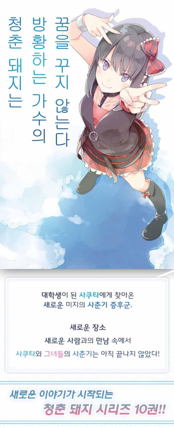 청춘 돼지는 방황하는 가수의 꿈을 꾸지 않는다. 10(L노벨(L Novel)) 도서 상세이미지