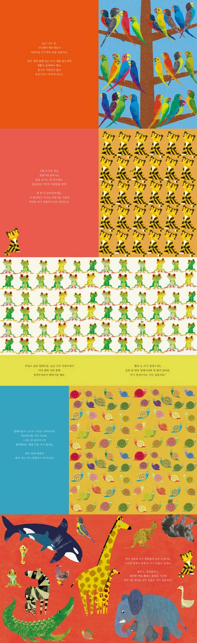 아기 동물은 어디 있을까요?(베스트 세계 걸작 그림책 44) 도서 상세이미지