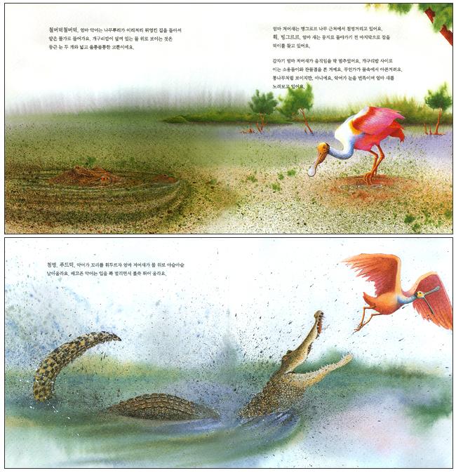 저어새와 악어(마루벌의 좋은 그림책 70)(양장본 HardCover) 도서 상세이미지