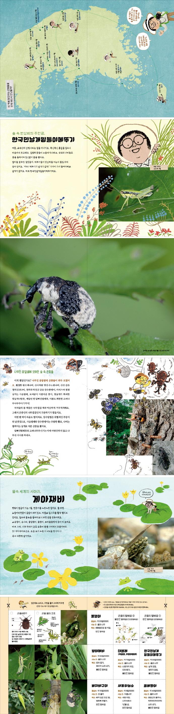 우리 땅 곤충 관찰기. 1: 꼭꼭 숨은 곤충의 집 도서 상세이미지