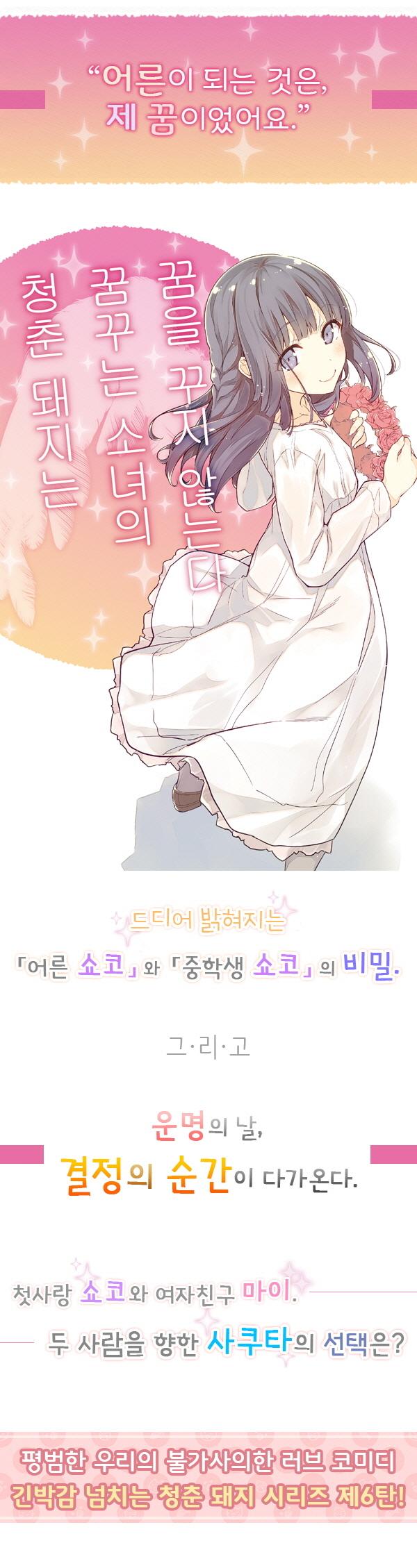 청춘 돼지는 꿈꾸는 소녀의 꿈을 꾸지 않는다(청춘 돼지 시리즈 6) 도서 상세이미지