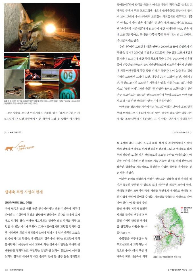 도로 위의 야생동물(NIE Eco Guide 3) 도서 상세이미지