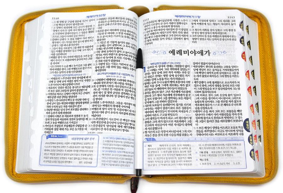 New 굿데이성경(브라운)(중합본)(색인)(새찬송가)(지퍼)(주석(단색))(개역개정) 도서 상세이미지