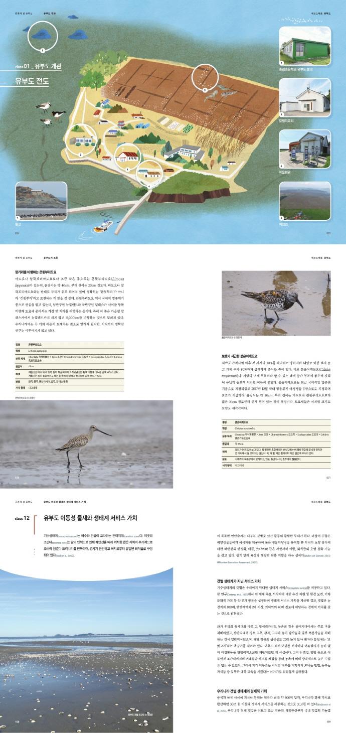 생태로 배우는 유부도 이야기(NIE ECO SPECIAL 2) 도서 상세이미지