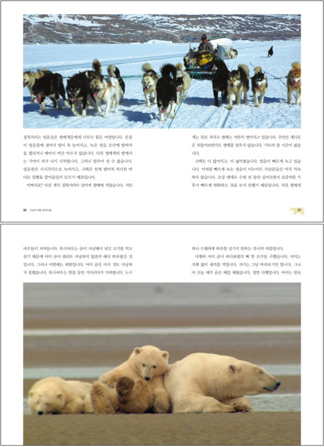 북극의 눈물(MBC 창사 특별기획 다큐멘터리) 도서 상세이미지