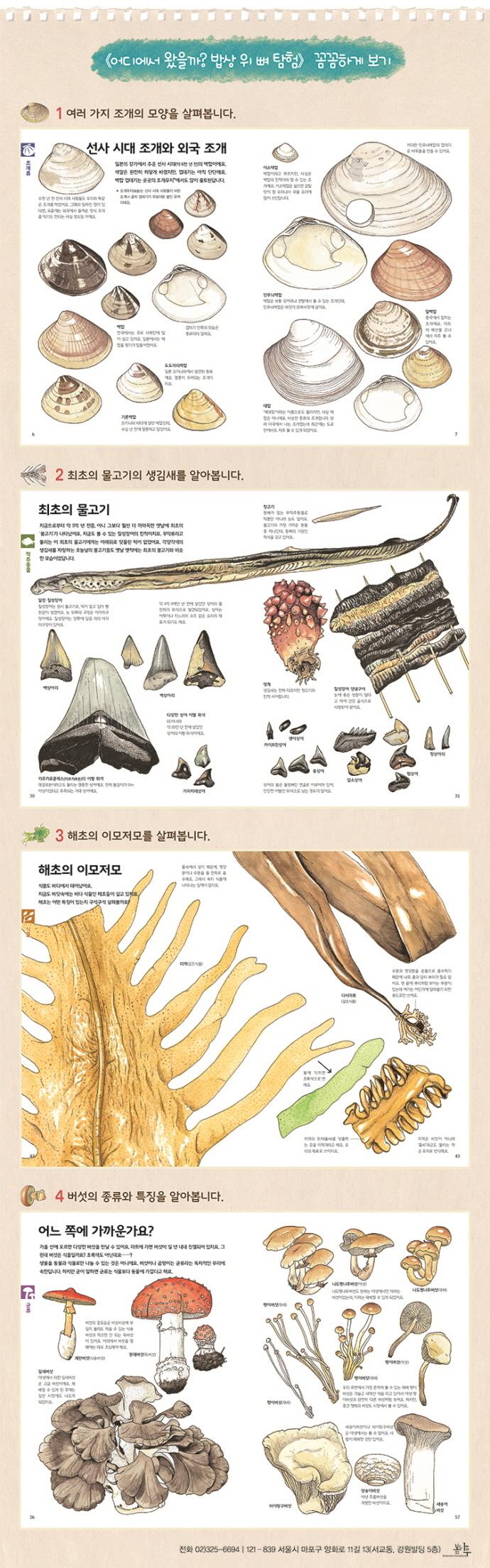 어디에서 왔을까? 맛있는 진화의 비밀(양장본 HardCover) 도서 상세이미지