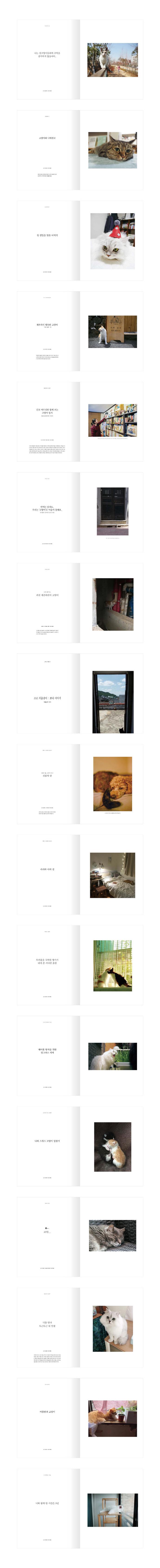 감성 매거진C(2018년 9월호) 도서 상세이미지