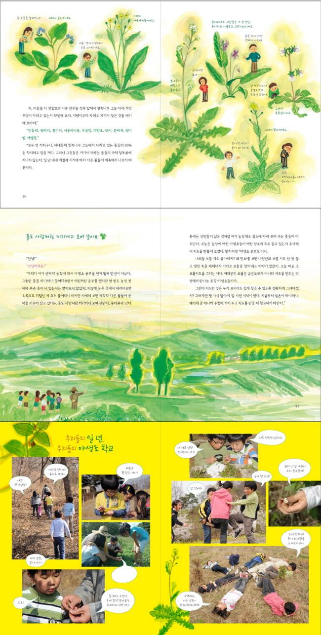 야생초 학교(토토 생각날개 12) 도서 상세이미지