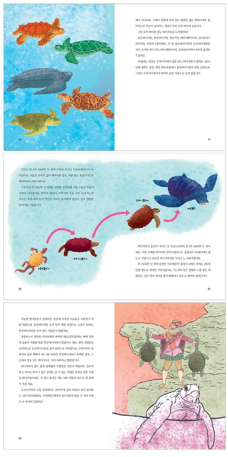 바다거북 코에 빨대가 꽂혀 있습니다(풀과바람 환경생각 15) 도서 상세이미지