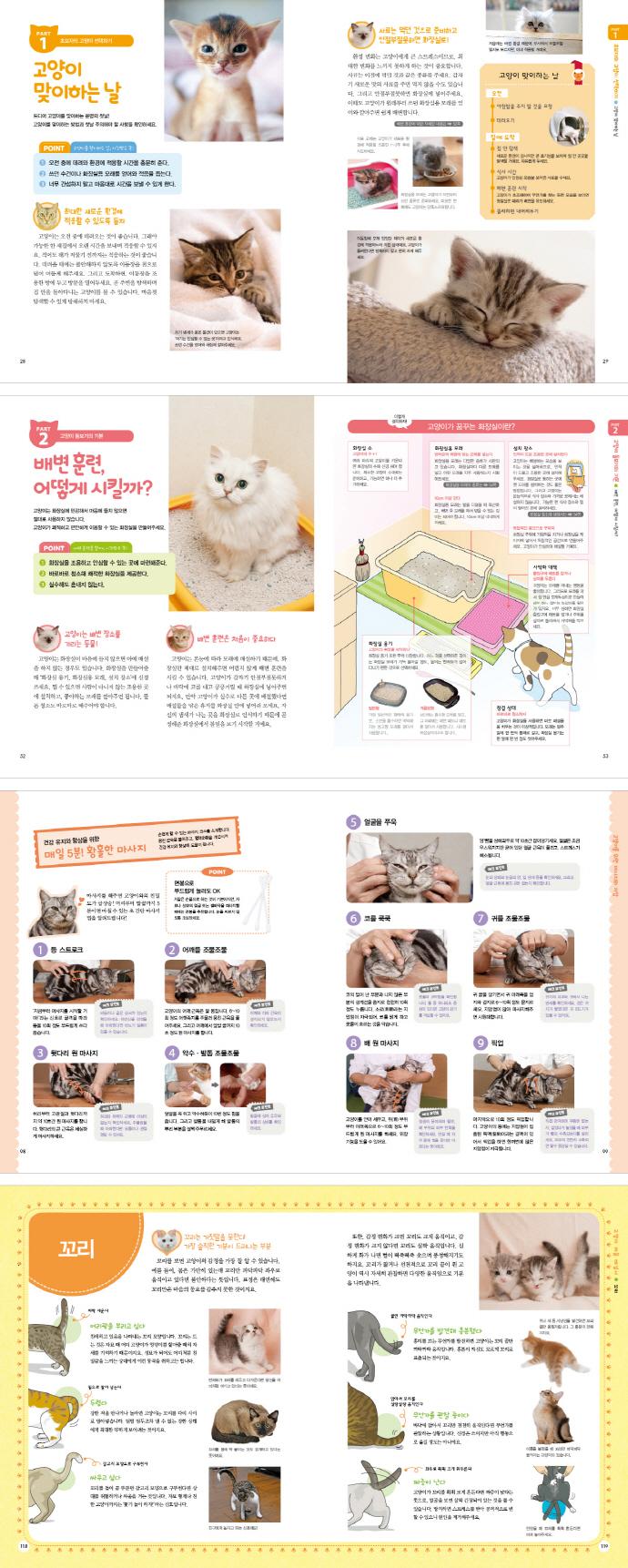달콤 살벌 고양이 수업(수의사와 함께 하는) 도서 상세이미지