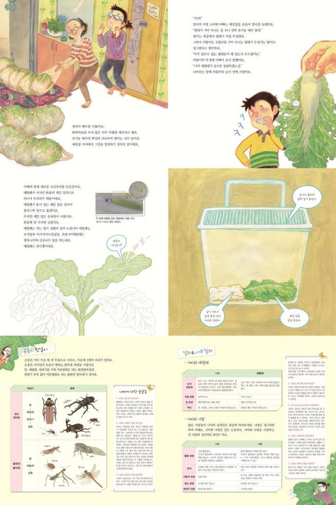 우리 집에 배추흰나비가 살아요(자연과 함께 하는 살림 생태 학습 5)(양장본 HardCover) 도서 상세이미지