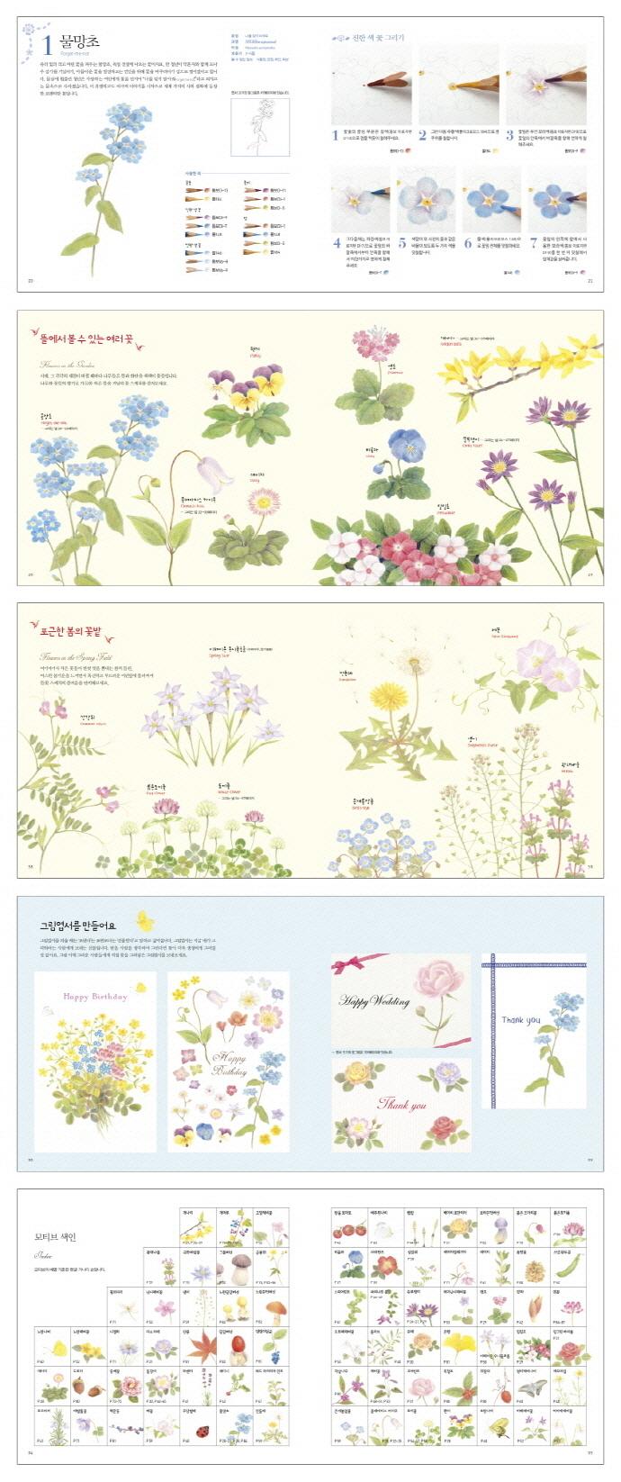 향기 나는 색연필 꽃그림 도서 상세이미지