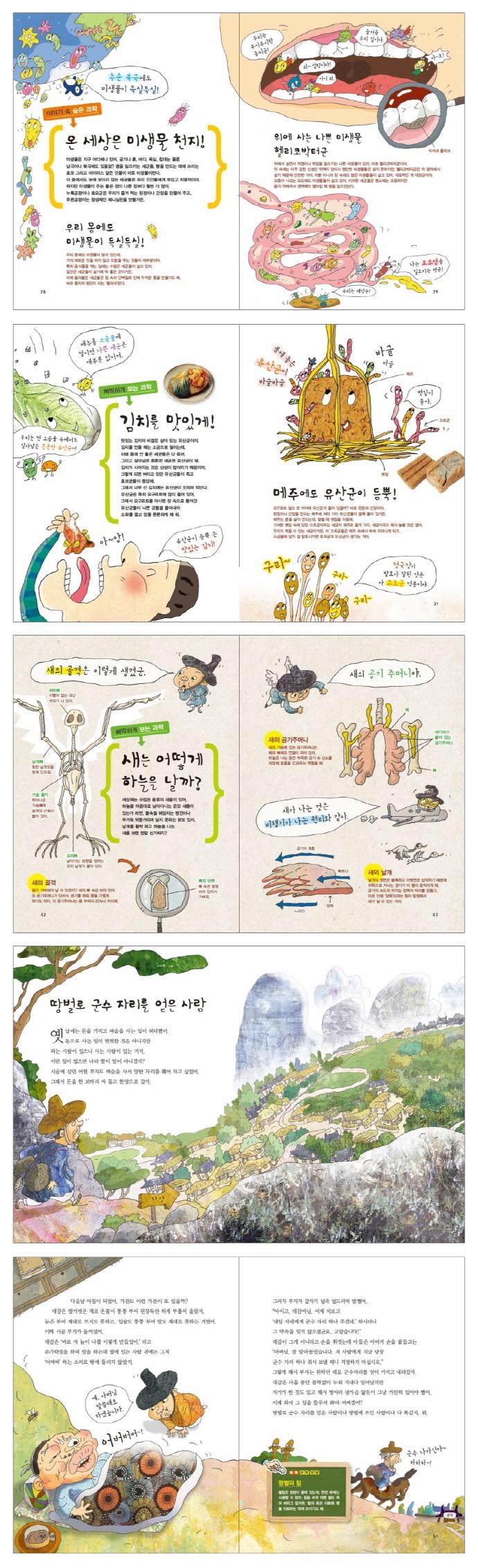 토끼와 거북이는 포유류와 파충류(저학년 Steam 스쿨 2: 동식물) 도서 상세이미지