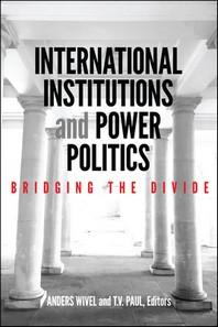 [해외]International Institutions and Power Politics (Hardcover)