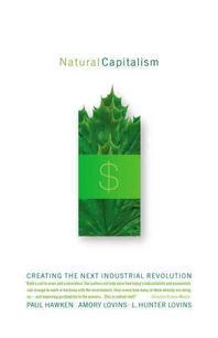 [해외]Natural Capitalism (Paperback)