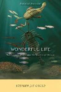 [해외]Wonderful Life