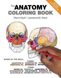 [해외]The Anatomy Coloring Book