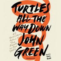 [해외]Turtles All the Way Down (Compact Disk)
