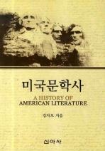 미국문학사