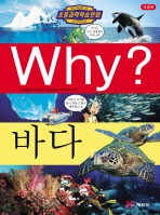 Why 바다