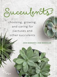 [해외]Succulents (Mini)