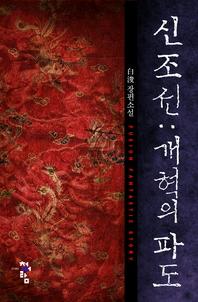 신 조선 개혁의 파도