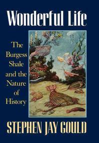 [해외]Wonderful Life (Hardcover)