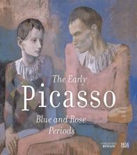 [해외]Picasso