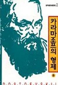 카라마조프의 형제(중)(세계문학선 2-4)