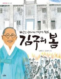 김구의 봄(쌈지떡 문고 15)
