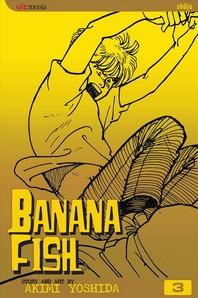 Banana Fish, Volume 3