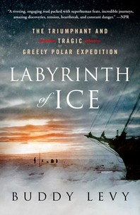 [해외]Labyrinth of Ice (Paperback)