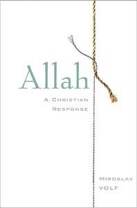 [해외]Allah (Hardcover)