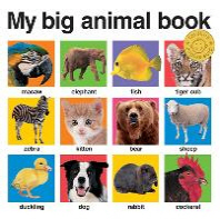 [해외]My Big Animal Book