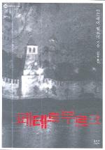 페테르부르크(대산세계문학총서 48)
