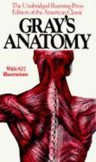 [해외]Gray's Anatomy (Paperback)