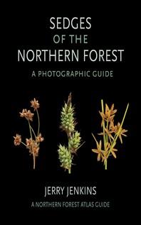 [해외]Sedges of the Northern Forest