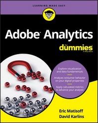 [해외]Adobe Analytics for Dummies
