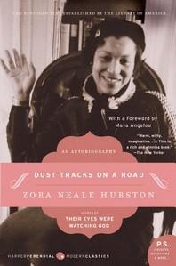[해외]Dust Tracks on a Road