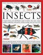 [해외]The Illustrated World Encyclopedia of Insects