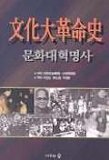 문화대혁명사