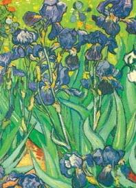 Van Gogh Notebook: 16 Art Stickers ( Decorative Notebooks )