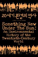 20세기 환경의 역사