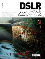 DSLR 스타일 샷