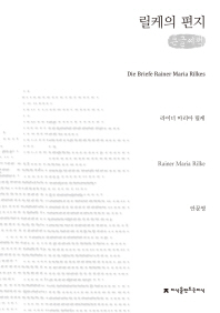 릴케의 편지(큰글씨책)(지식을만드는지식 수필비평선집)