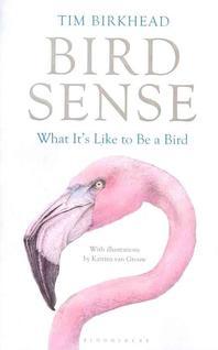 [해외]Bird Sense (Hardcover)