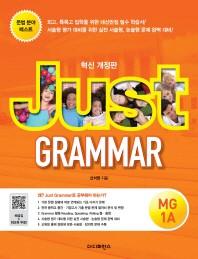 Just Grammar MG 1A